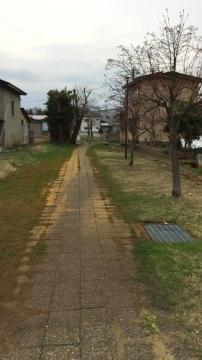 弘前歩き4-9 (13)_500