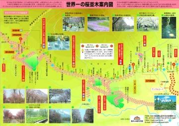 桜並木マップ_700