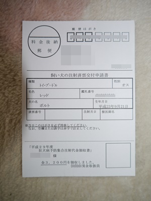 P1140604.jpg