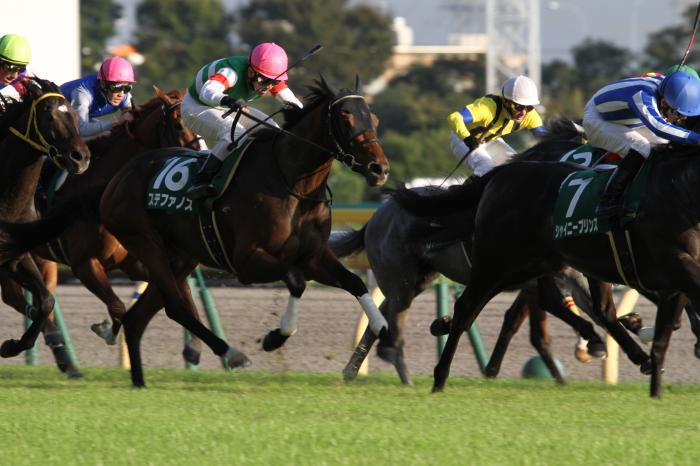 2014 ステファノス 富士S1