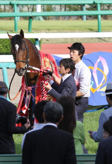2017 アルアイン 皐月賞3