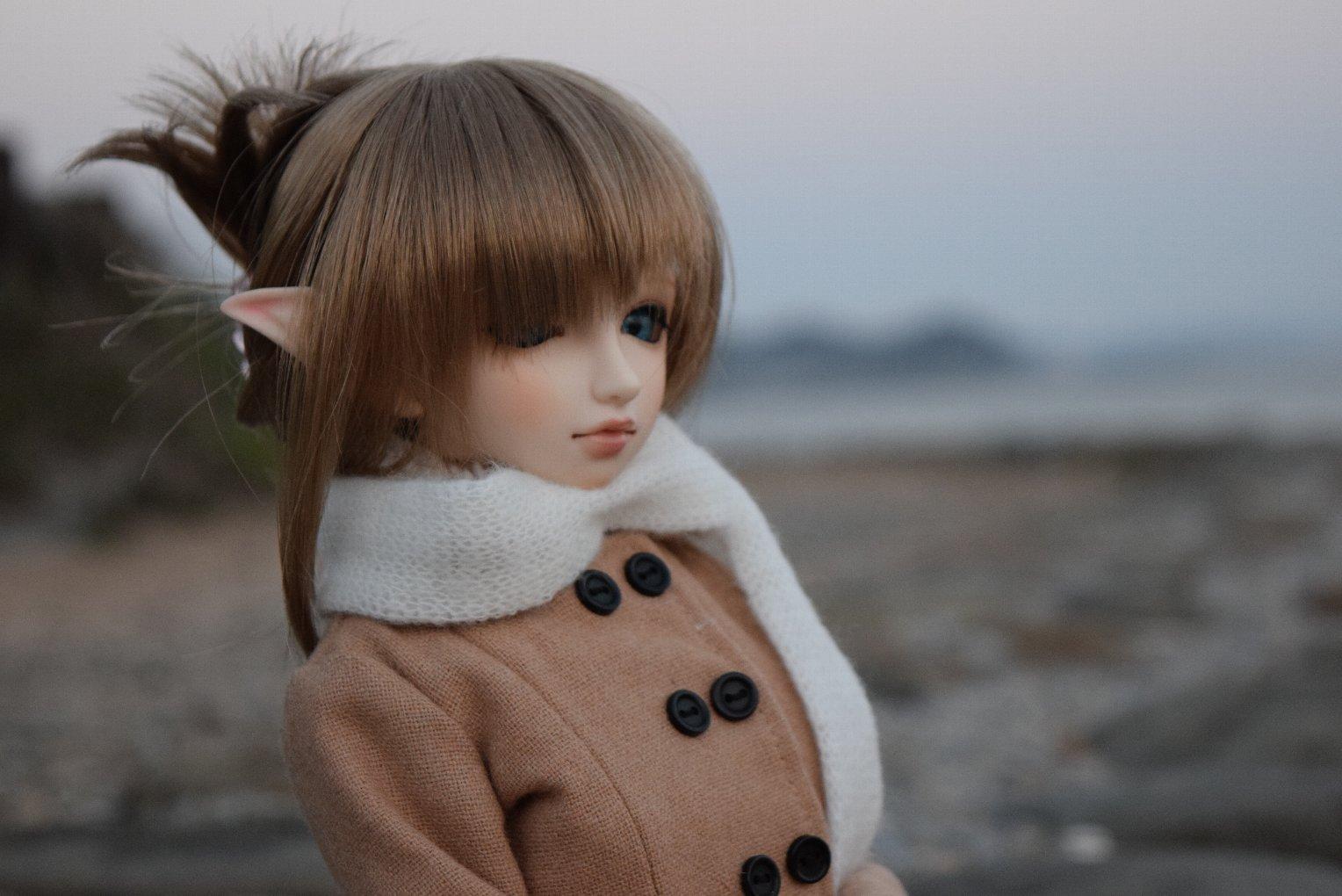 doll_3887.jpg