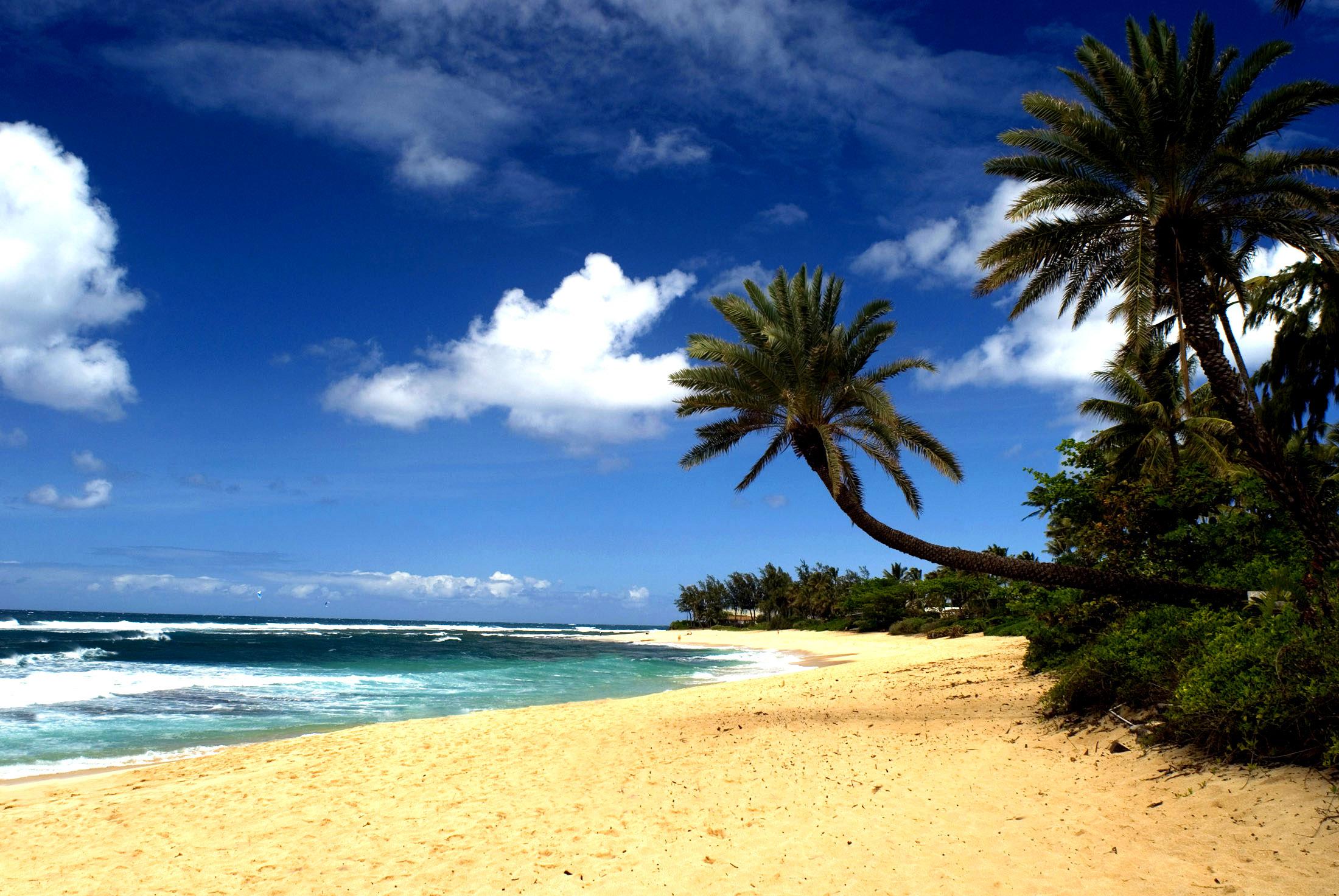 hawaiian_beach.jpg