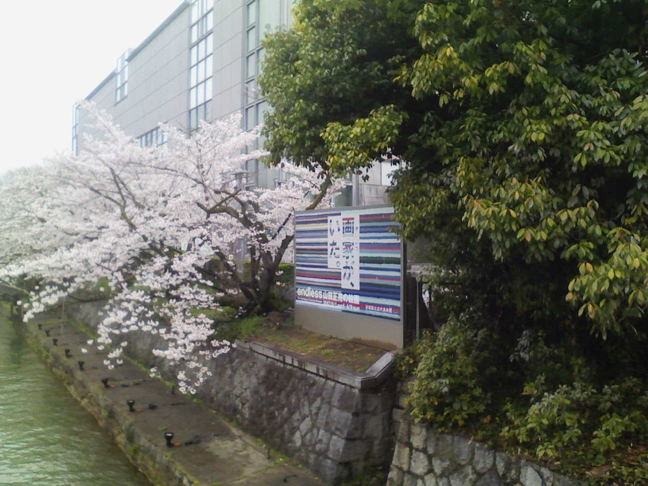 2014_04_07__京都国立近代美術館