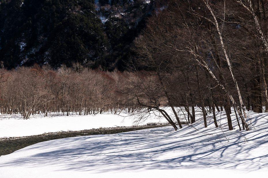 2017.02.24上高地_樹木の影4