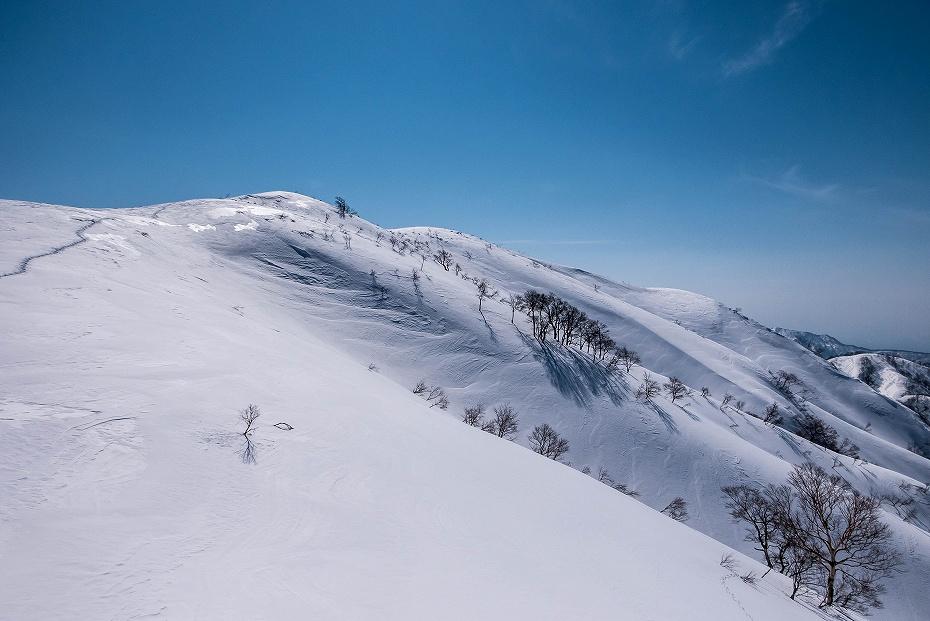 2017.03.04大長山_鉢伏山から大長山直前まで12