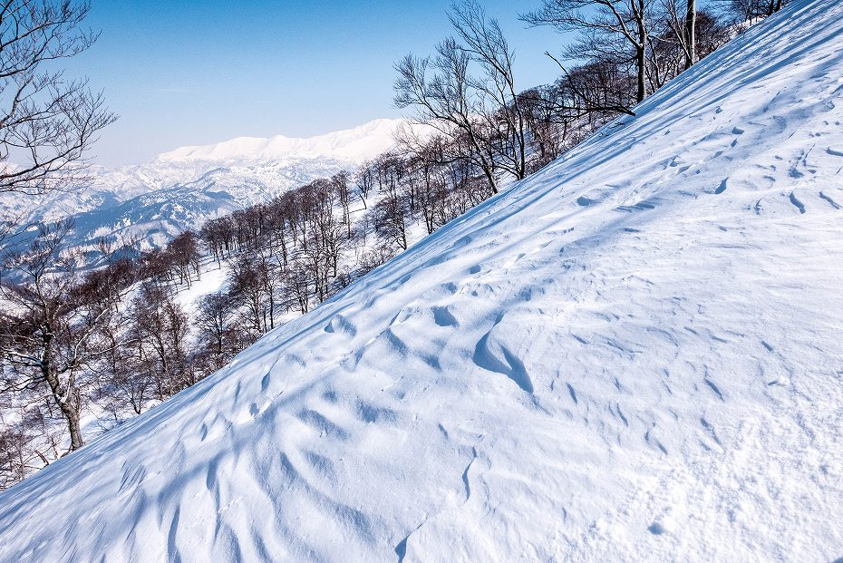 2017.03.04大長山_鉢伏山から大長山直前まで7