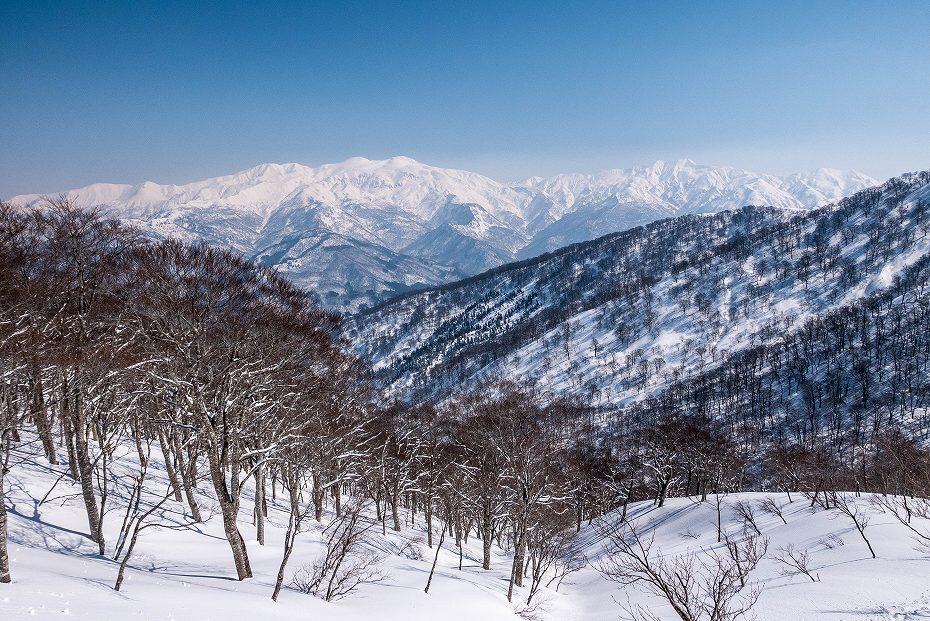 2017.03.04大長山_鉢伏山から大長山直前まで4