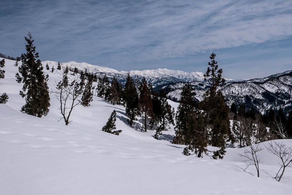 2017.03.25白峰の西山13