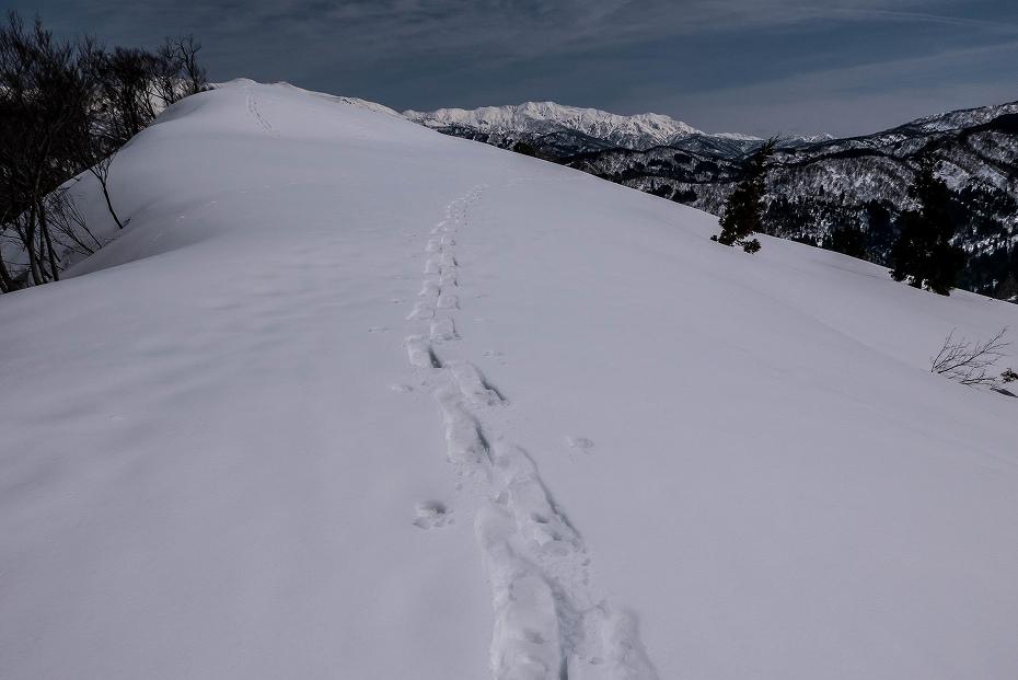 2017.03.25白峰の西山10