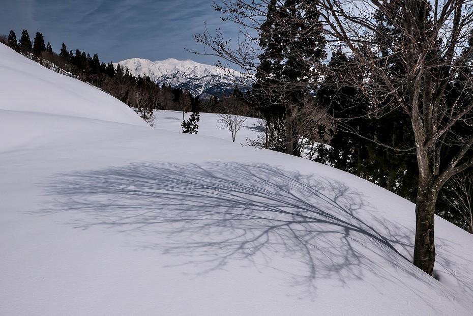 2017.03.25白峰の西山14