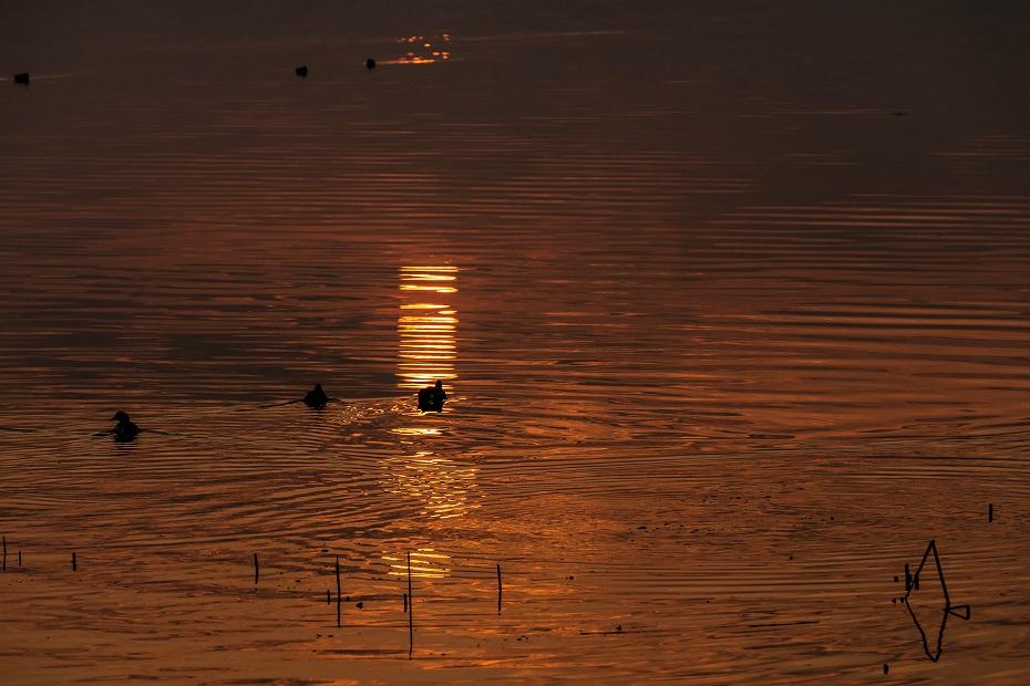 2017.03.30河北潟からの日の出6