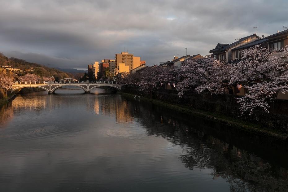 2017.04.07主計町の桜並木8