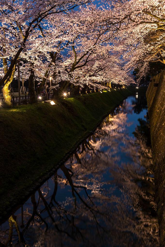 2017.04.08金沢城の桜18
