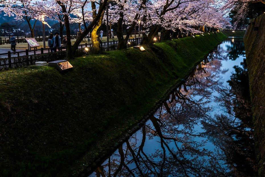 2017.04.08金沢城の桜17