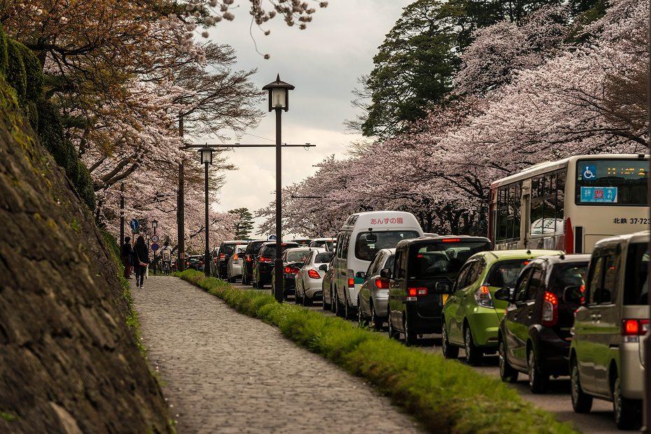 2017.04.08金沢城の桜10