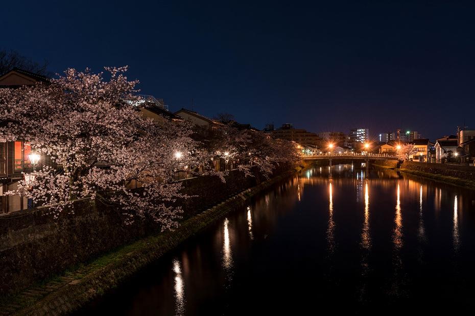 2017.04.10主計町の夜桜1