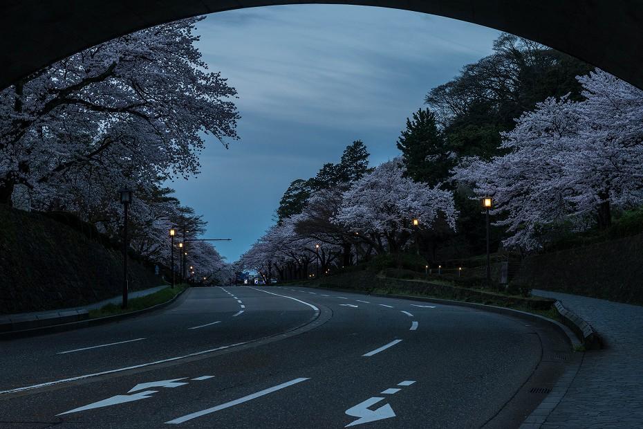 2017.04.10夜明けの金沢城10
