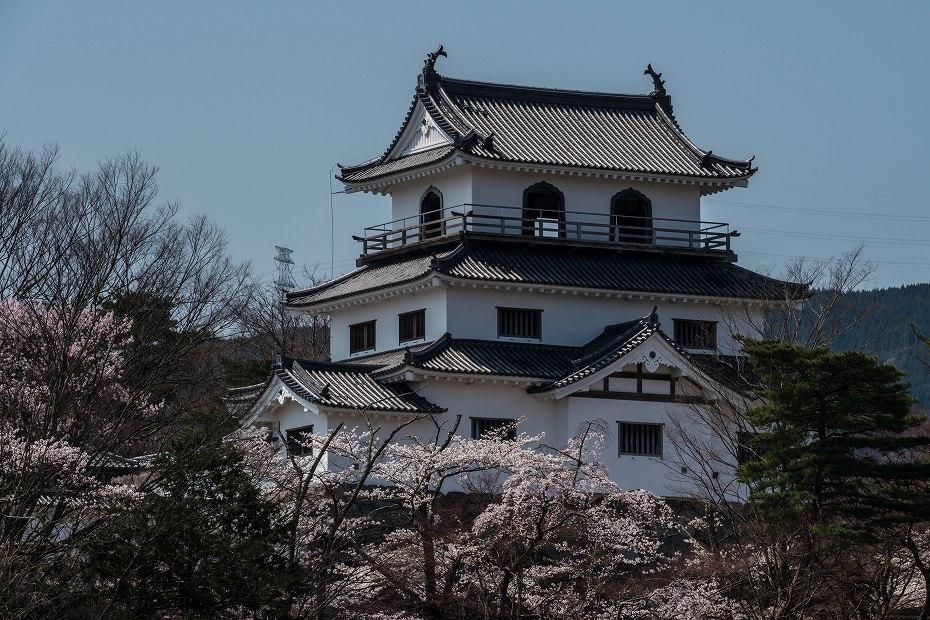 2017.04.14白石城の桜14