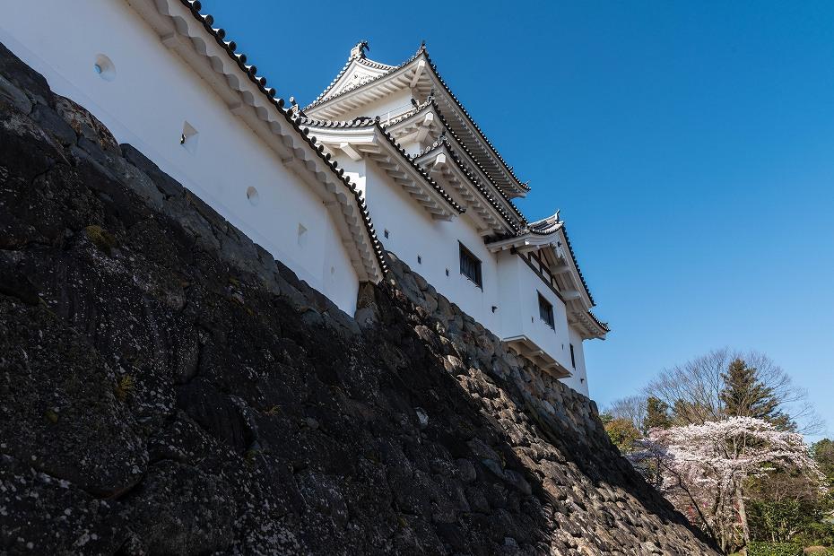 2017.04.14白石城の桜4