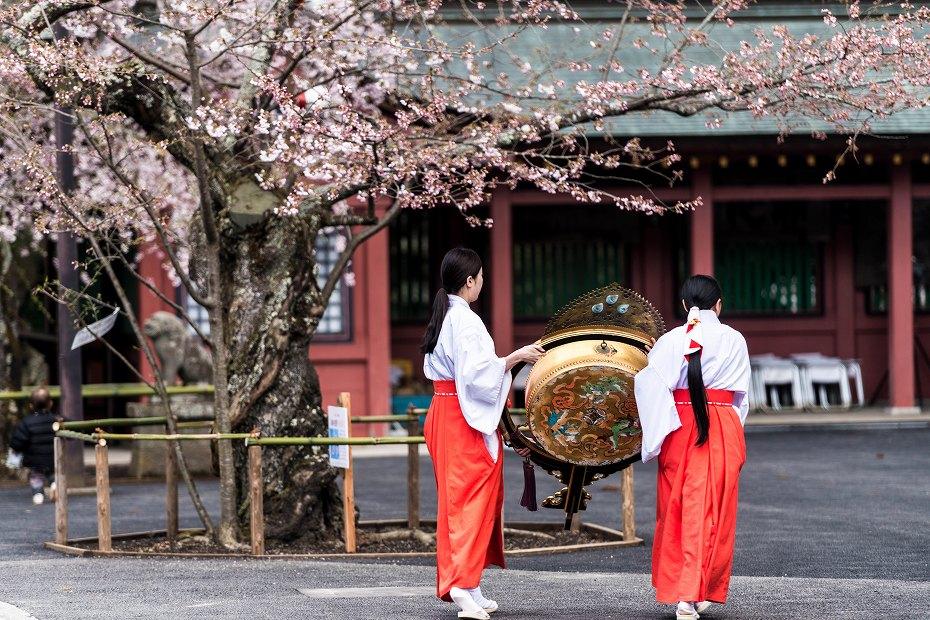 2017.04.15塩竃神社の桜景色9