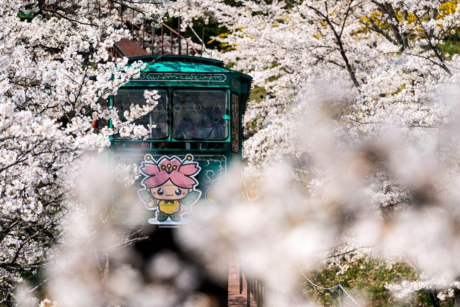 2017.04.16船岡城址公園からの展望6