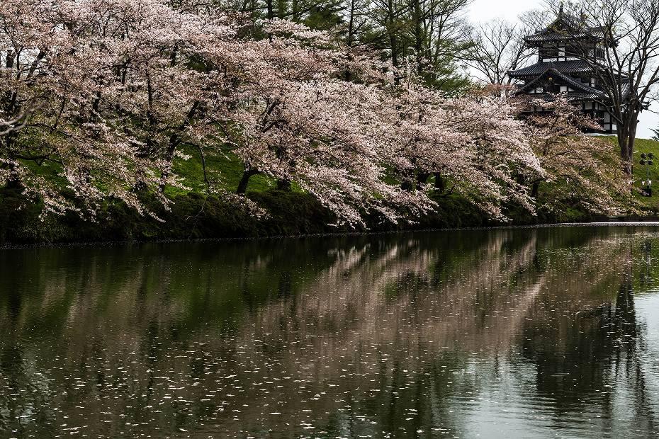 2017.04.17高田公園の花筏14