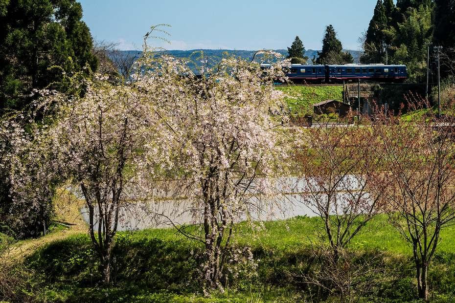 2017.04.24のと鉄道4