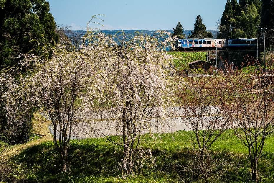 2017.04.24のと鉄道5
