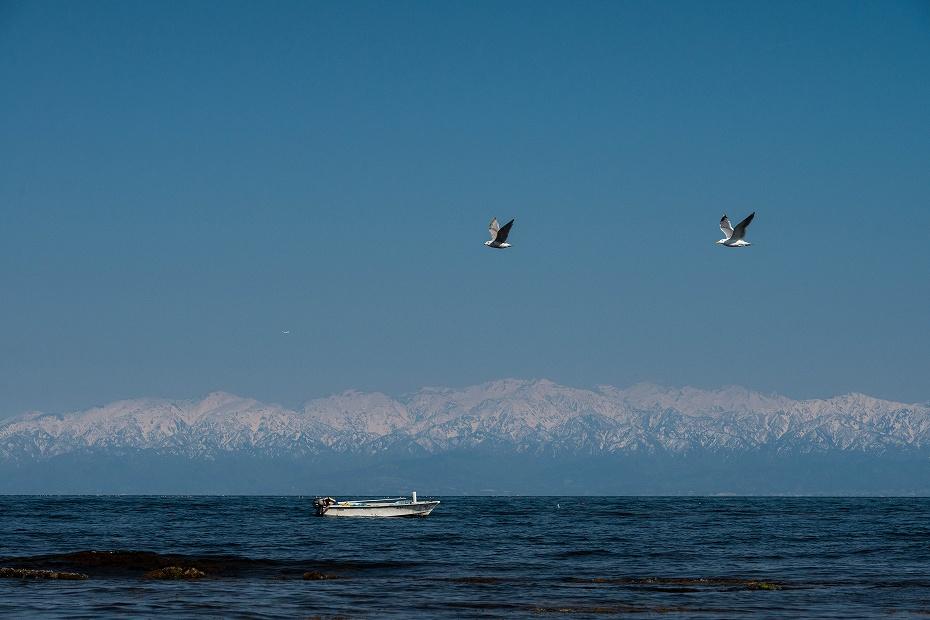 2017.04.24海越えの北アルプス14