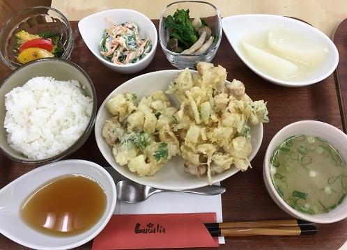 2017-2-14(火) 2