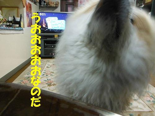 s-170222-8.jpg