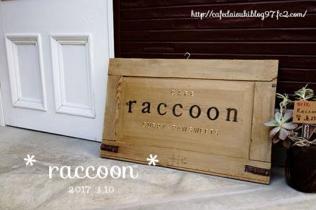 raccoon◇看板