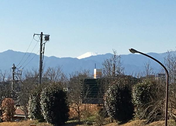 19 富士山