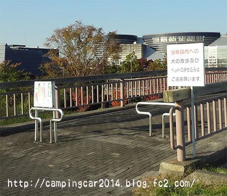 1611-furusato-8.jpg