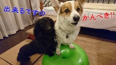 201703かんぺき