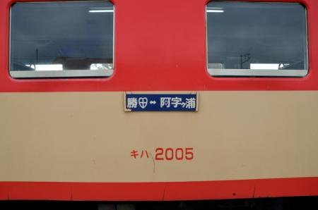 DSC_4514.jpg