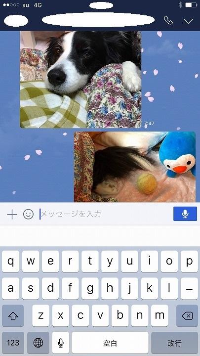 s-IMG_8793_1.jpg