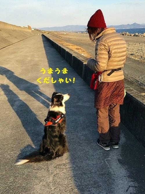 s-_20170304_194346.jpg