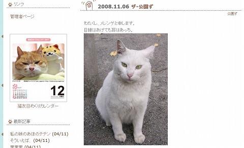 s-20081008.jpg