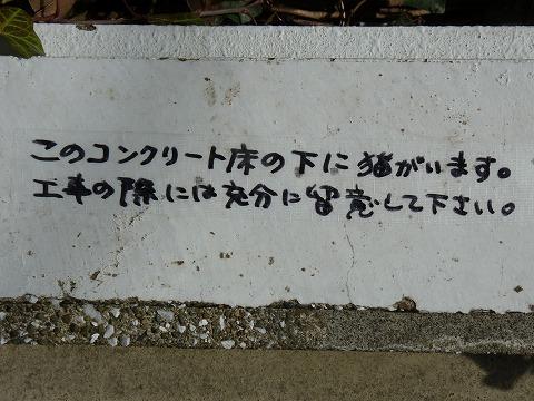 s-P1990111.jpg