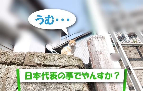 うむ・・・  「日本代表の事でやんすか?」