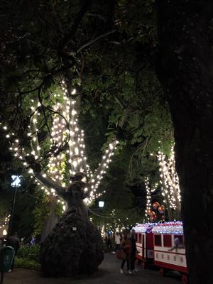 クリスマスイルミ01