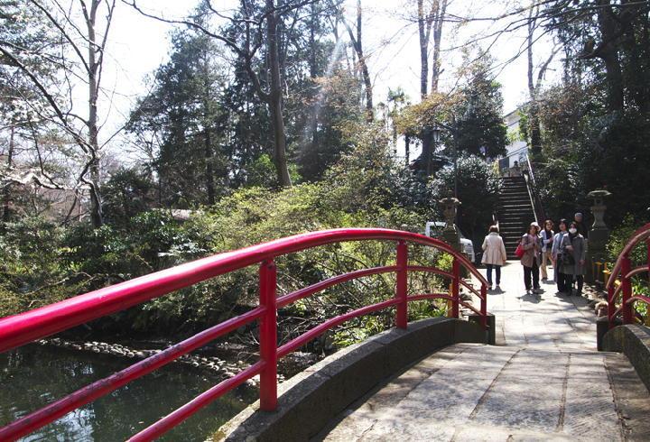 井の頭公園-116