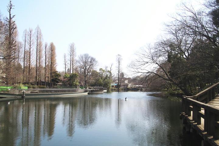 井の頭公園-076