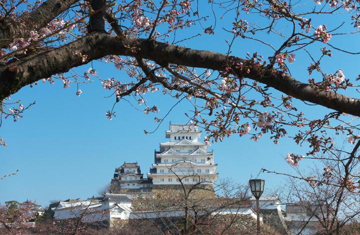 姫路城-701