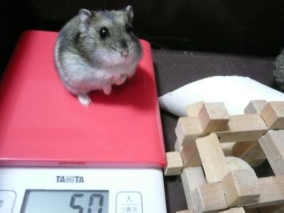 体重増加2