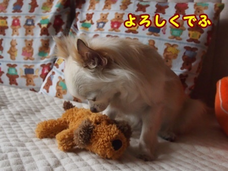 blog9088a.jpg