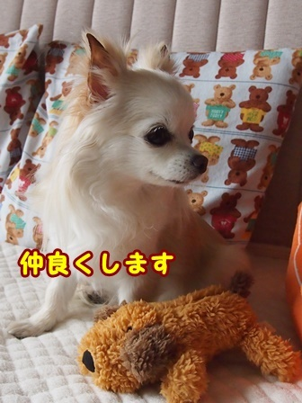 blog9089a.jpg