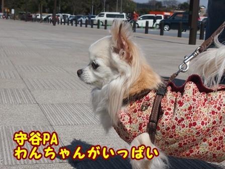blog9204a.jpg